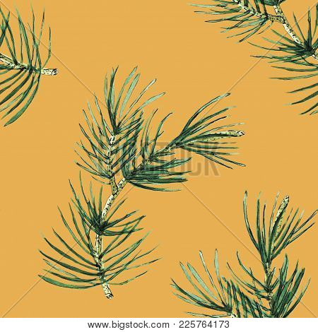 Pine Branch Watercolor Seamless Pattern Illustration On Yellow Backgroung. Will Be Good For Decor A