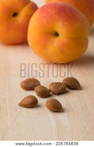 Dried apricot stones and fresh healthy apricots in the background