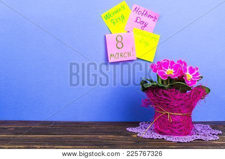 Cards For The Valentine's Day, International Women's Day, March 8, Mother's Day. Pink Beautiful Prim