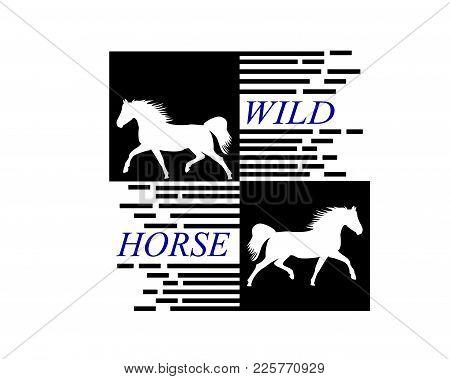 White Horse Runs Vector Photo Free Trial Bigstock