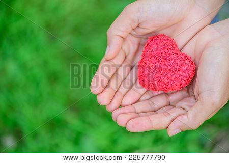 Woman Giving Red Heart On Green Grass Background And Love In Valentine's Day. People, Charity, Famil