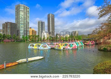 Pedal Boats And Tokyo Cityscape On Background On Shinobazu Pond In Ueno Park, A Public Park Next To