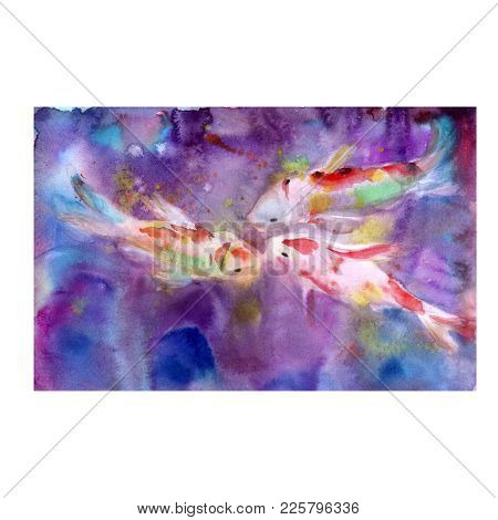 Watercolor Drawing Of Koi Fish, Abstraction Background