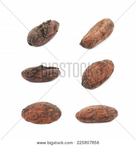 Single Cocoa Bean Isolated Over The White Background, Set Of Several Different Foreshortenings