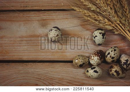 Quail Eggs Lie On The Boards Next To The Wheat Spikelets.