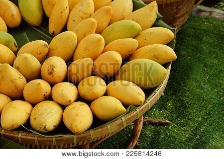Pile Of Sweet Yellow Ripe Mangoes On Banana Leaf And Rattan Basket Prepared For Selling In Market
