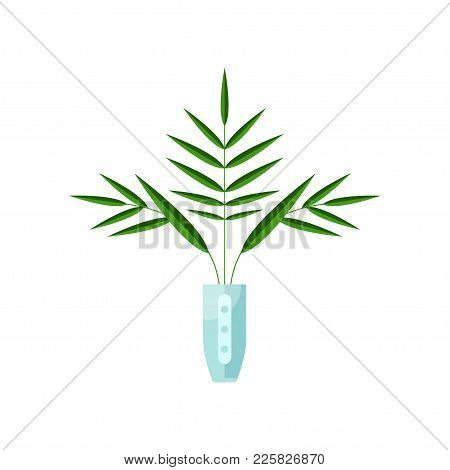 Parlor Palm House Plant, Indoor Flower In Pot, Elegant Home Decor Vector Illustration On A White Bac