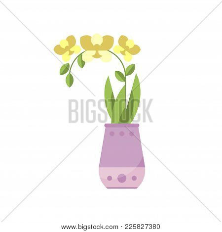 Yellow Orchid House Plant, Indoor Flower In Pot, Elegant Home Decor Vector Illustration On A White B