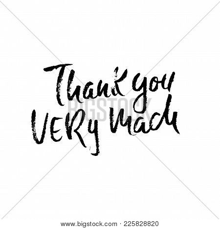 Thank You Very Mach. Handwritten Inscription. Hand Drawn Modern Dry Brush Lettering. Thank You Card.