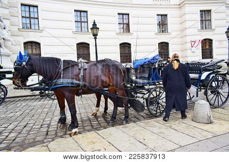 A Pair Of Horses Harnessed To The Carriage And The Driver Are Waiting For Their Customers. On The St