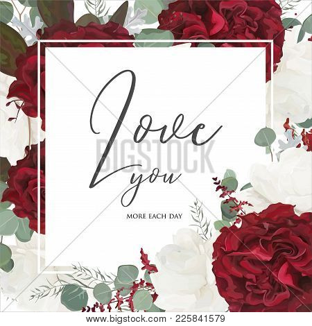 Vector Floral Greeting Card Design With Red And White Garden Rose Flowers, Seeded Eucalyptus Branche
