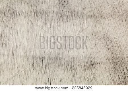 Surface Of Grey Fur Faux Rug In Room