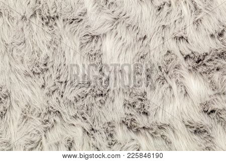 Surface Of Faux Rug In Backgrounds In Room