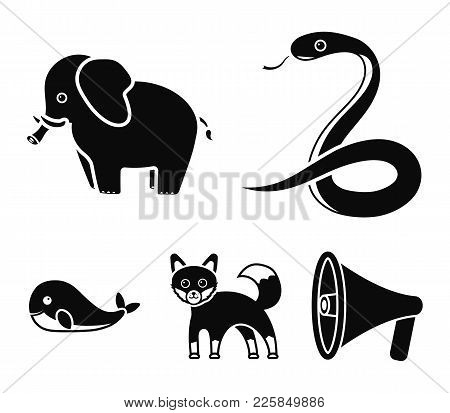Whale, Elephant, Snake, Fox.animal Set Collection Icons In Black Style Vector Symbol Stock Illustrat