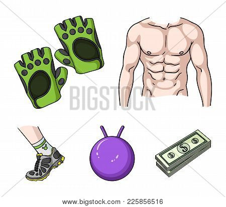 Men's Torso, Gymnastic Gloves, Jumping Ball, Sneakers. Fitnes Set Collection Icons In Cartoon Style
