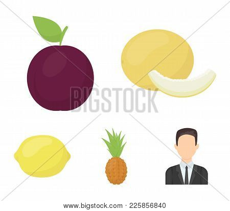 Melon, Plum, Pineapple, Lemon.fruits Set Collection Icons In Cartoon Style Vector Symbol Stock Illus