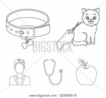 Collar, Bone, Cat, Haircut .vet Clinic Set Collection Icons In Outline Style Vector Symbol Stock Ill
