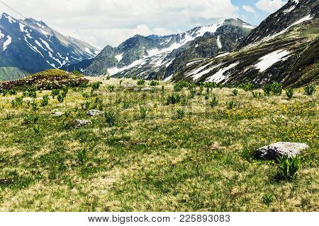 Alpine Meadows And Flower Meadows Against The Backdrop Of Peaks. Idyllic Scene Of High Mountains, Hi