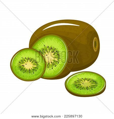 Bright Vector Set Of Colorful Half, And A Slice Of Fresh Kiwi. Fresh Kiwi Fruit Cartoon Isolated On