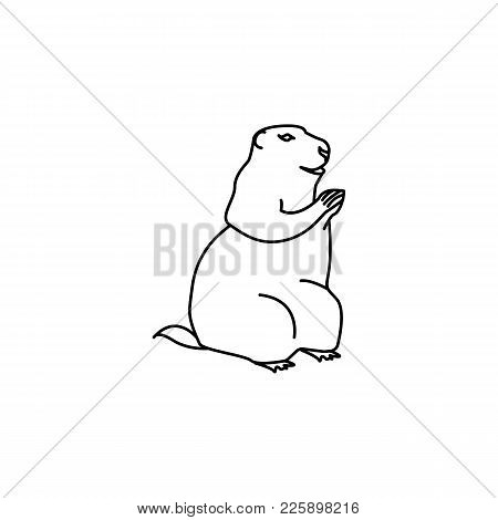 Marmot Icon. Element Of Rodents Icon. Premium Quality Graphic Design Icon. Baby Signs, Outline Symbo