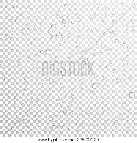 Vector Water Drops On Glass. Rain Drops On Transparent Background.