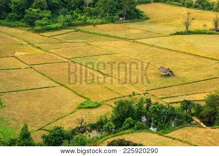 Aerial View Of Farm Fields In Vang Vieng, Vientien Province, Laos. Vang Vieng Is A Popular Destinati