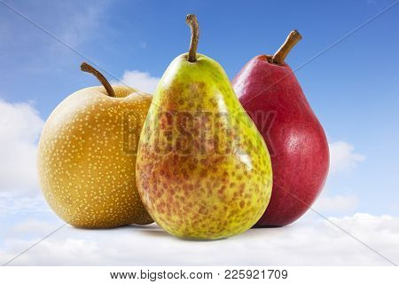 Pears And Sky - Heavenly Pears - Three Different Pears On A Sky Background. Front To Back Focus. Pea