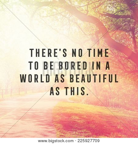 Quote - There's no time to be bored in a world as beautiful as this