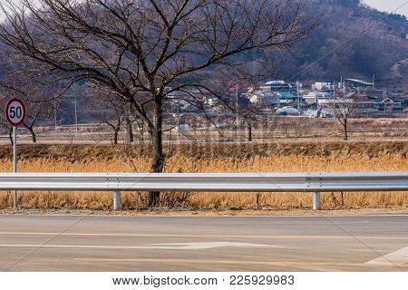 Barren Tree Behind Guardrail Next To A Paved Road With Farming Community And Small Mountain In Backg