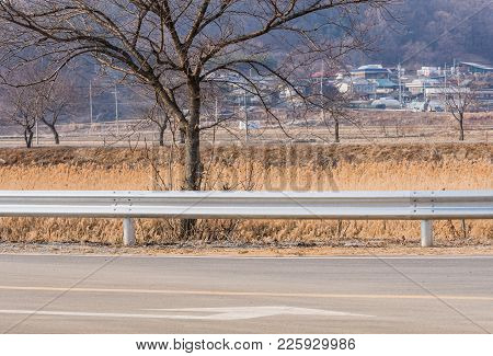 Barren Tree Behind Guardrail Next To A Paved Road With Small Community In Background On Overcast Win