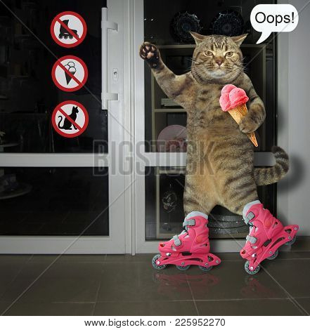 The Cat On Pink Roller Skates Eats Fruit Ice Cream.