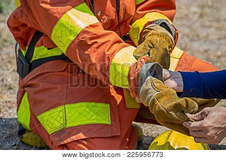 Firefighters Buddy Help Fireman To Wearing Fire Protection Gloves