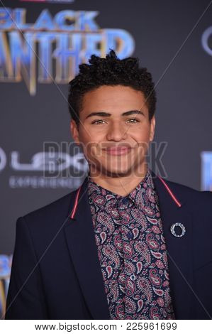 LOS ANGELES - JAN 29:  Nathaniel Potvin arrives for the 'Black Panther' World Premiere on January 29, 2018 in Hollywood, CA