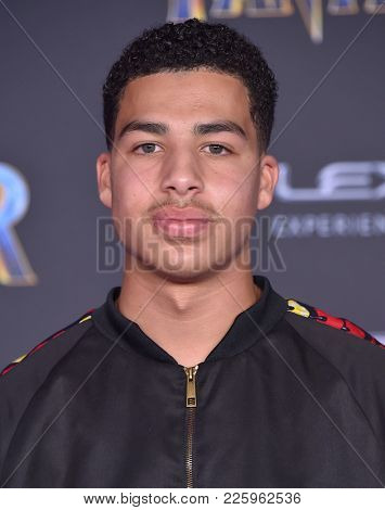 LOS ANGELES - JAN 29:  Marcus Scribner arrives for the 'Black Panther' World Premiere on January 29, 2018 in Hollywood, CA