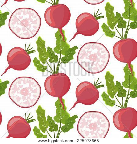 Vegetables Vector Icons In Cartoon Style.stock Vector. Collection Farm Product For Restaurant Menu,