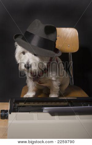Doggone Deadlines