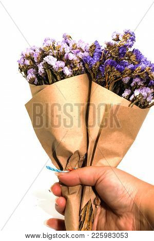 Close-up Two Brown Bouquet Purple Statice Dry Flower On Hand And White Background