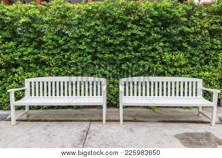 Wooden Chairs In The Garden, Bench Under The Tree In The Park