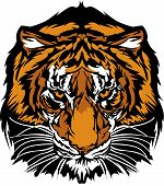 Graphic Mascot Image of a Tiger Head with Whiskers poster