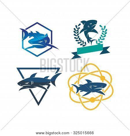 Shark Leaf Technology Triangle Logo Design Vector Set