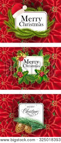 Merry Christmas Banner Set With Fir On Poinsettia Ground. Calligraphy With Decorative Design Can Be