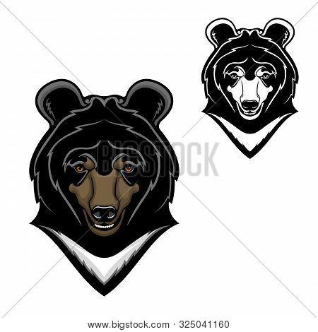 Bear Animal Head Vector Cartoon Of Himalayan Bear Mascot Design. Wild Predatory Mammal With White Ch