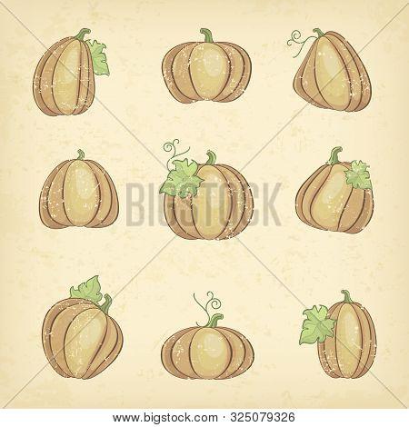 Grange Pumpkins With Green Leaves, Halloween Set. Vector Illustration.