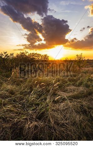 poster of Sunset in meadow nature landscape. Meadow landscape in sunset. Nature landscape. Sunset in meadow landscape. Stunning sunset landscape. Landscape. Nature. Sunset. Orange sunset in meadow landscape.