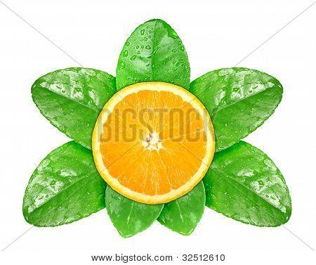 Orange Fruit On Green Leaf With Dew