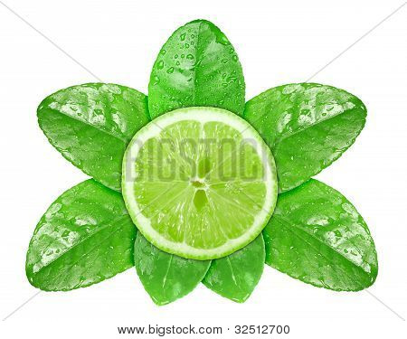 Lime Fruit On Green Leaf With Dew