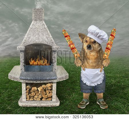 The Dog In A Chef Hat And Apron Cooks The Grilled Meat On The Steel Skewers Is Next To A Granite Bbq