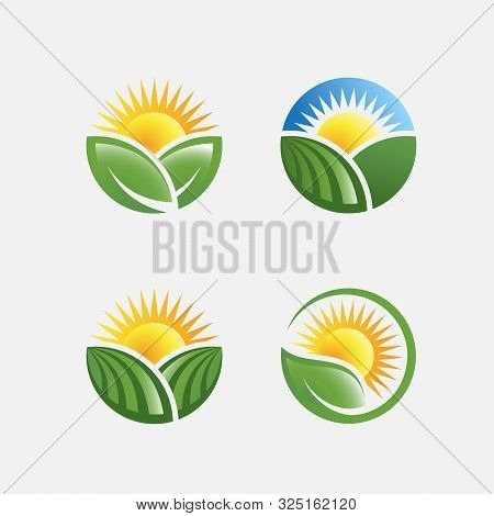 Farm Logo Design Illustration, Agriculture Design Set Template, Farming Label Design Pack, Green Far
