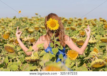 Sunflower Namaste, Positive Approach To Life Summer, Summertime, Millennial Life