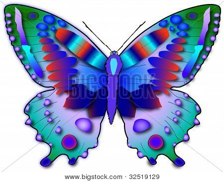 Vector Multicolored Butterfly